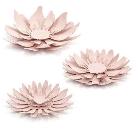 3 différentes fleurs roses