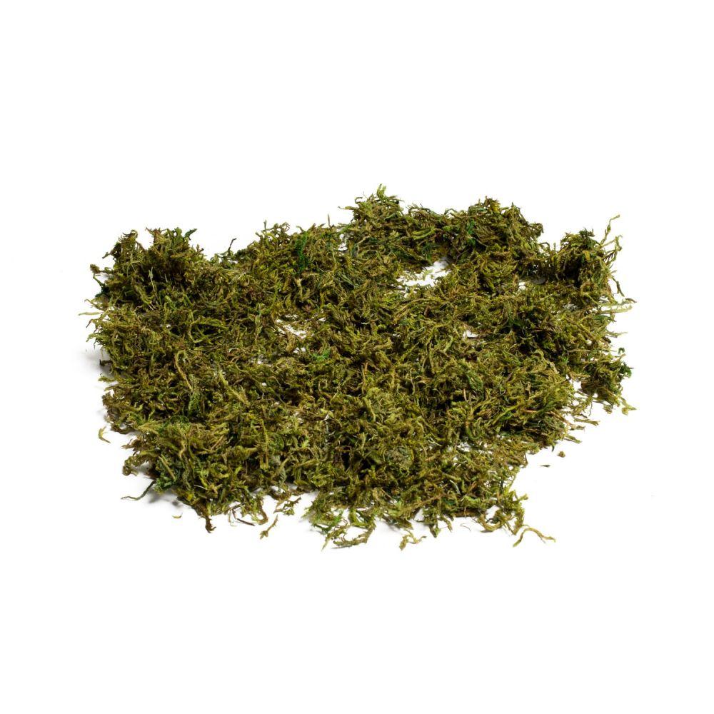 Mousse semi-sèche - 50 g