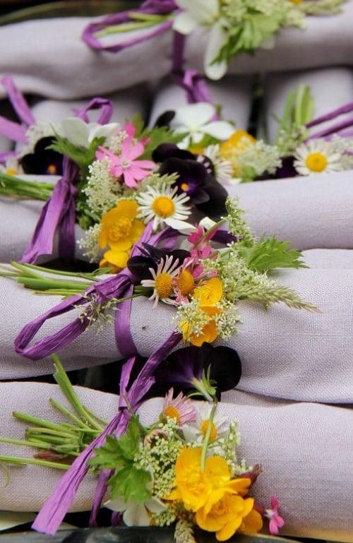fleurs violettes 500 px